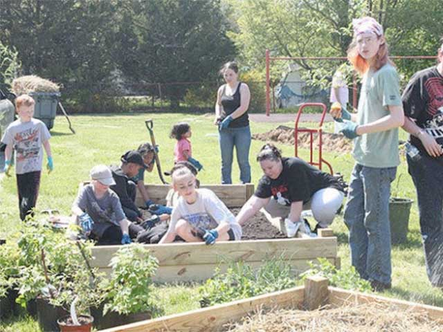 Community Garden Update From Revive South Jersey New