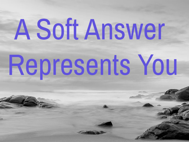 A Soft Answer Represents You